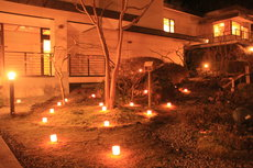 light up garden